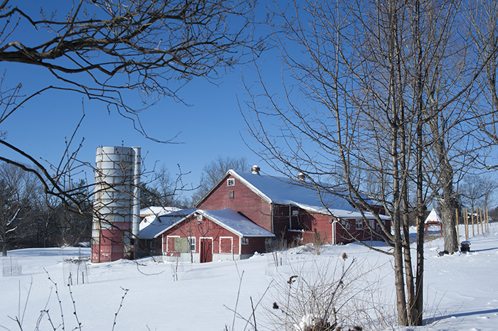 snowy wintertime wide shot of barn from farmhouse