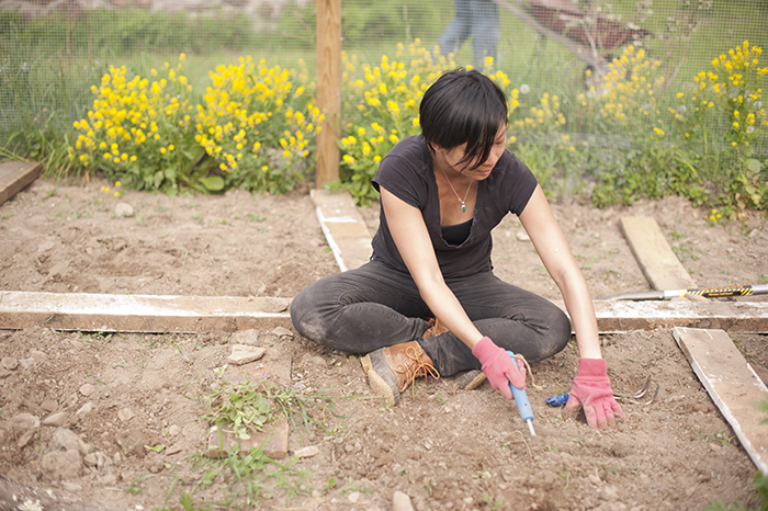 Diane Truong seated in the dirt of the organic garden, weeding
